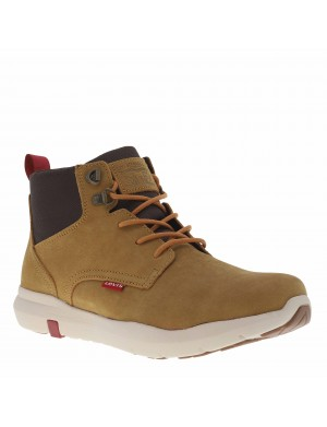 Boots Alpine homme marron